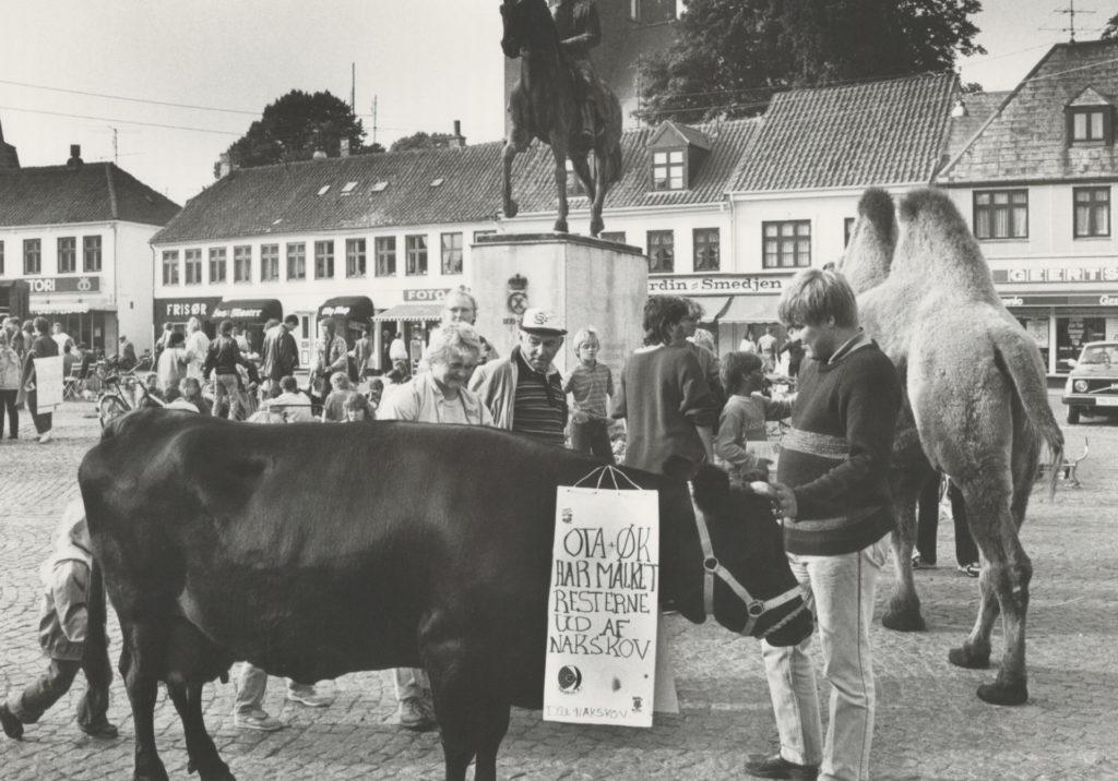 DSU demonstration i Nakskov 1985-1995