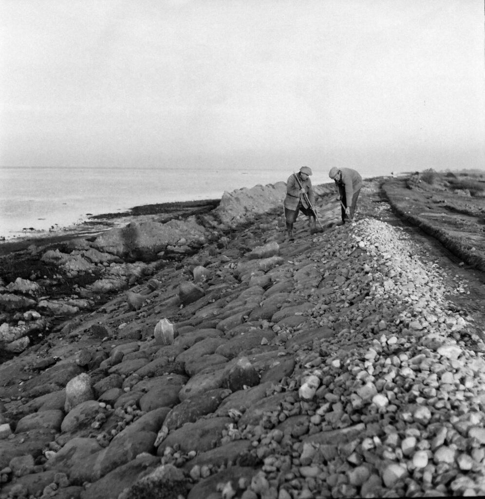 Diget i Kastager forbedres i 1956